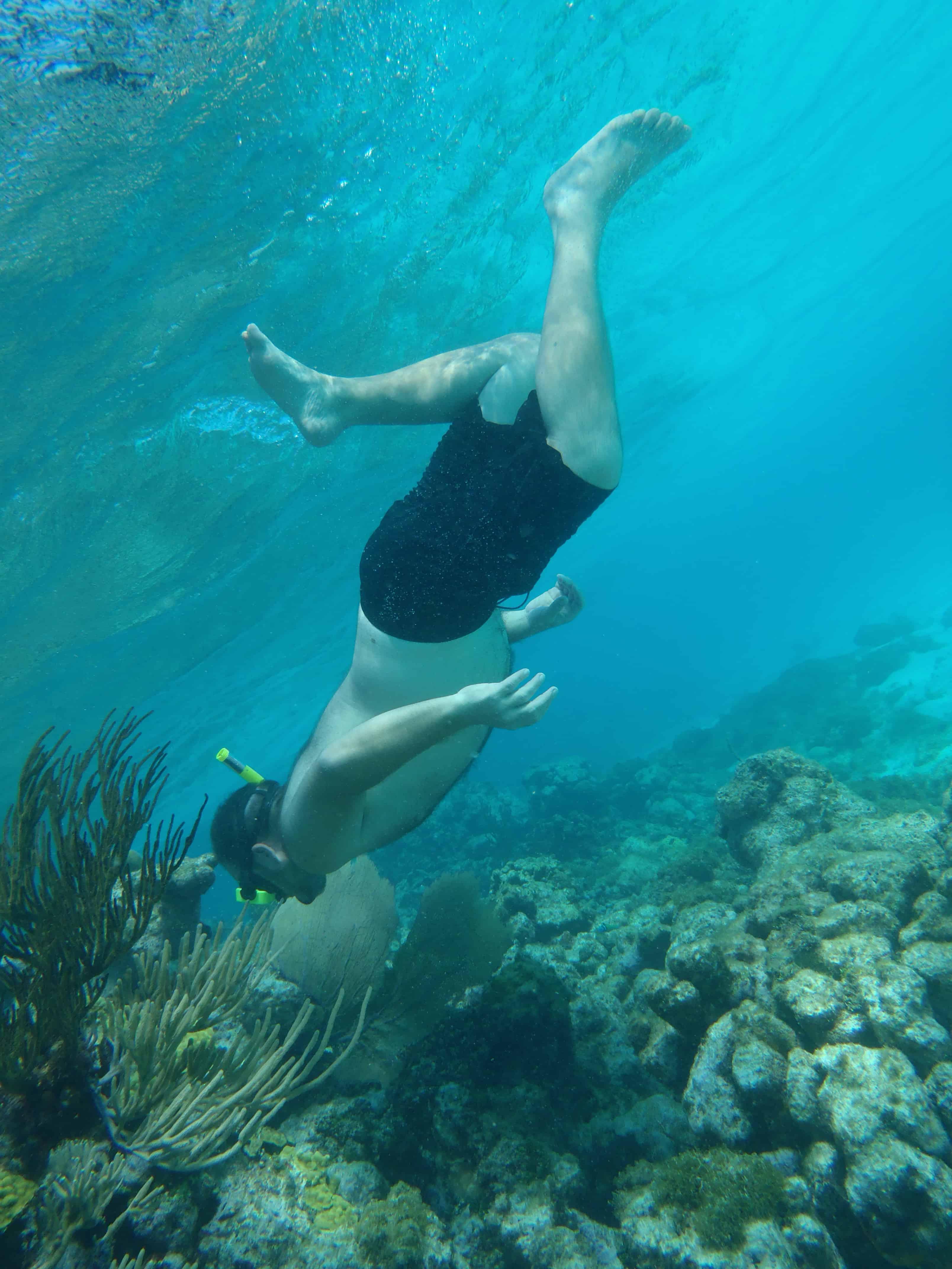 Skal du lære at dykke?